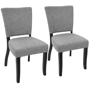 Tuyet Side Chair (Set of 2) by Latitude Run