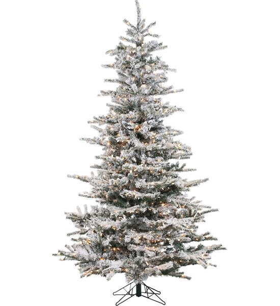 lark manor pre lit 85 white spruce artificial christmas tree with 750 clear white lights reviews wayfair - White Prelit Christmas Tree