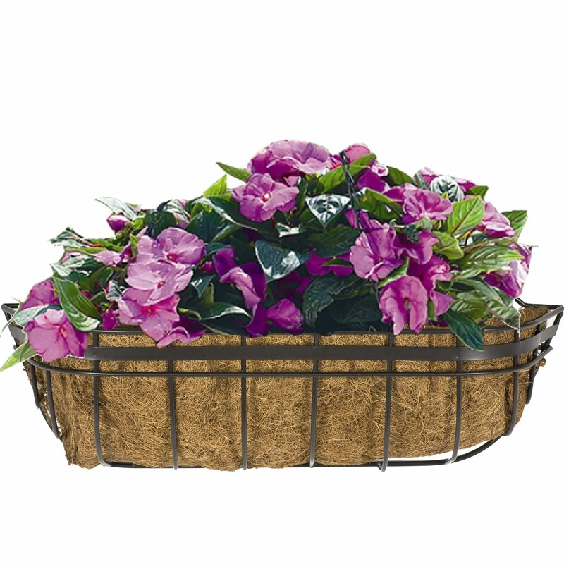 Cobraco queen elizabeth steel window box planter reviews for Wayfair garden box