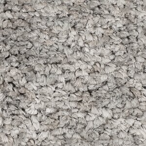 Fomalhaut Grey Area Rug