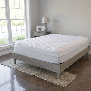 king size bed frames youll love wayfair - Box Spring Vs Bed Frame
