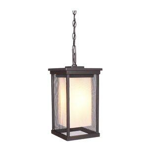 Oakhill 1-Light Outdoor Hanging Lantern