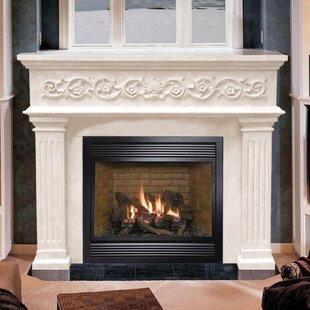 Designer Michael Angelo Fireplace Surround
