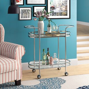 Steinmetz Modern Iron/Glass Bar Cart