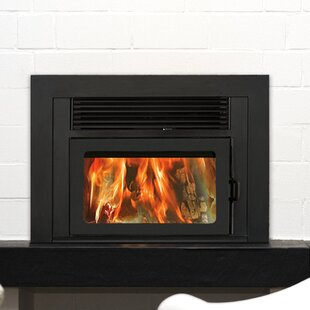 Prefab Fireplace Doors | Wayfair