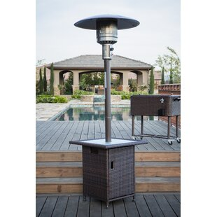 40,000 BTU Propane Patio Heater