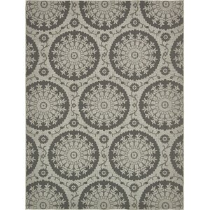 Forbes Gray Outdoor Area Rug
