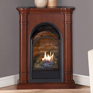 corner ventless gas fireplace wayfair rh wayfair com lp gas ventless corner fireplace rustic corner ventless gas fireplace insert with tv mantel