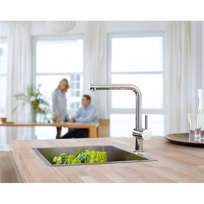 Grohe Minta Single Handle Pull-Out Kitchen Faucet & Reviews ...