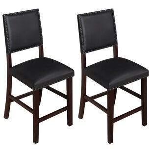 Northup 24 Bar Stool (Set of 2)