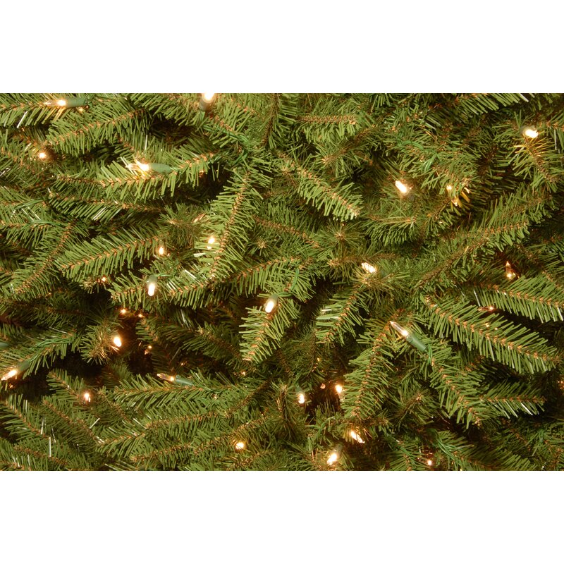 12 Ft Pre Lit Christmas Tree Costco: Mercer41 Fir 12' Hinged Green Artificial Christmas Tree