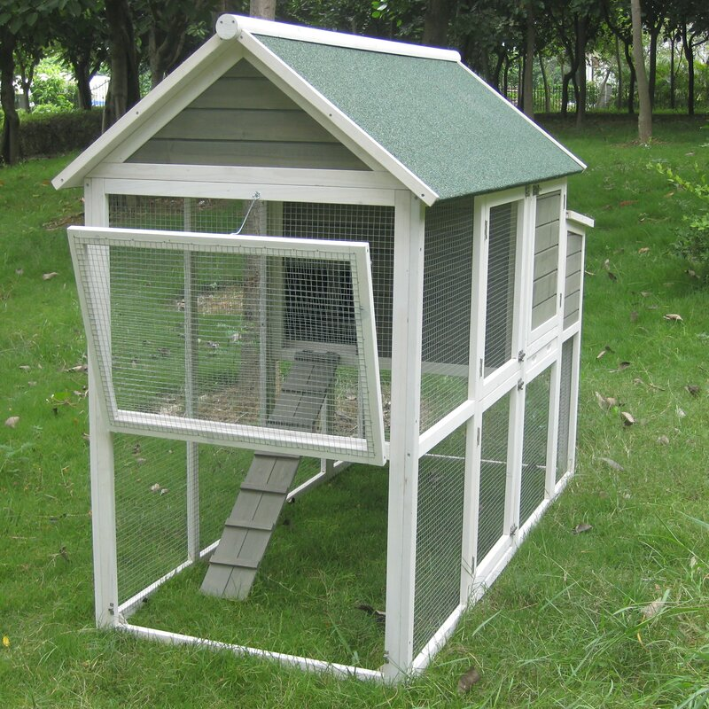 Hen House For Interior Design Html on outhouse interiors, red house interiors, brown house interiors, swedish house interiors, cottage interiors, norway house interiors, fish house interiors, tree house interiors, fun house interiors, poultry house interiors, foursquare house interiors, cat house interiors, shed interiors, dog house interiors, garage interiors, bus house interiors, black house interiors, kitchen interiors, green house interiors, hill house interiors,