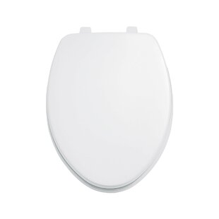 Oblong Toilet Seat Cover Wayfair