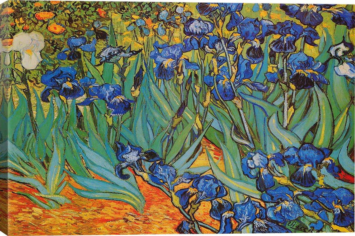 Irises By Vincent Van Gogh Print Amp Reviews Joss Amp Main