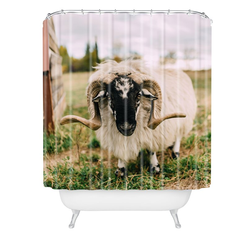 Chelsea Victoria The Curious Sheep Shower Curtain