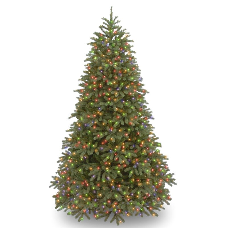jersey fraser fir 75 green fir artificial christmas tree with 1000 multi lights and stand - Christmas Trees With Lights