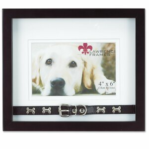 dog collar picture frame - Dog Picture Frame