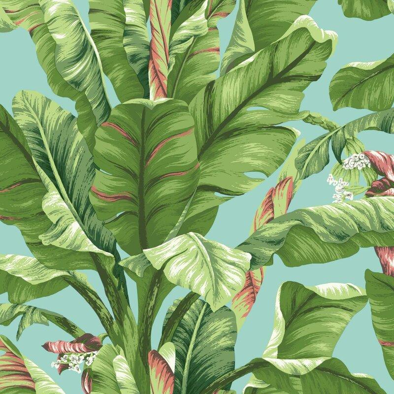 "York Wallcoverings Ashford Tropics 27' x 27"" Banana Leaf Wallpaper Roll"