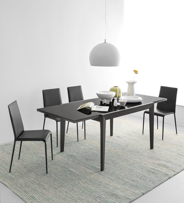 Abaco Extendable Dining Table & Reviews | AllModern