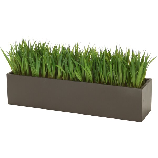 Distinctive Designs Grass In Rectangular Wood Planter