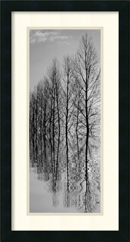 Reflections II by Anonymous Framed Photographic Print