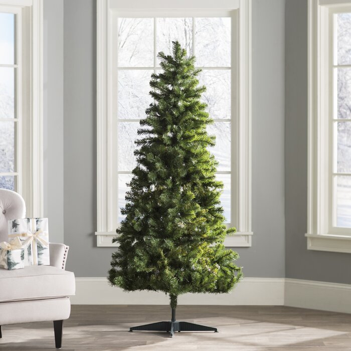 Wayfair Basics Wayfair Basics 6' Green Fir Artificial Christmas ...