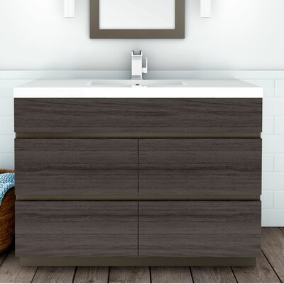 Inch Bathroom Vanities Youll Love Wayfairca - 48 inch vanity with sink