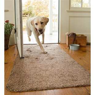 Mud Brown Area Rug & Modern \u0026 Contemporary Indoor Front Door Rugs | AllModern