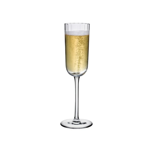 Nude Neo Champagne 6 Oz Crystal Flute Perigold
