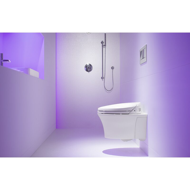 Veil One Piece Elongated Dual Flush Wall Hung Toilet With C3 Bidet Toilet