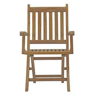 Elaina Outdoor Teak Wood Padded Folding Chair