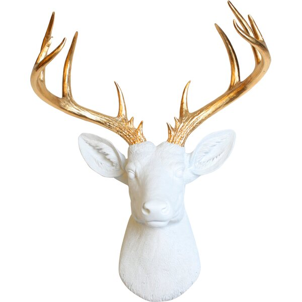 Deer Wall Decor white faux taxidermy the xl deer head wall decor & reviews | wayfair