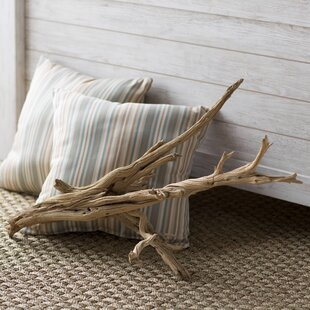 Decorative Natural California Driftwood Branch