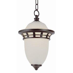 nita 1light outdoor pendant