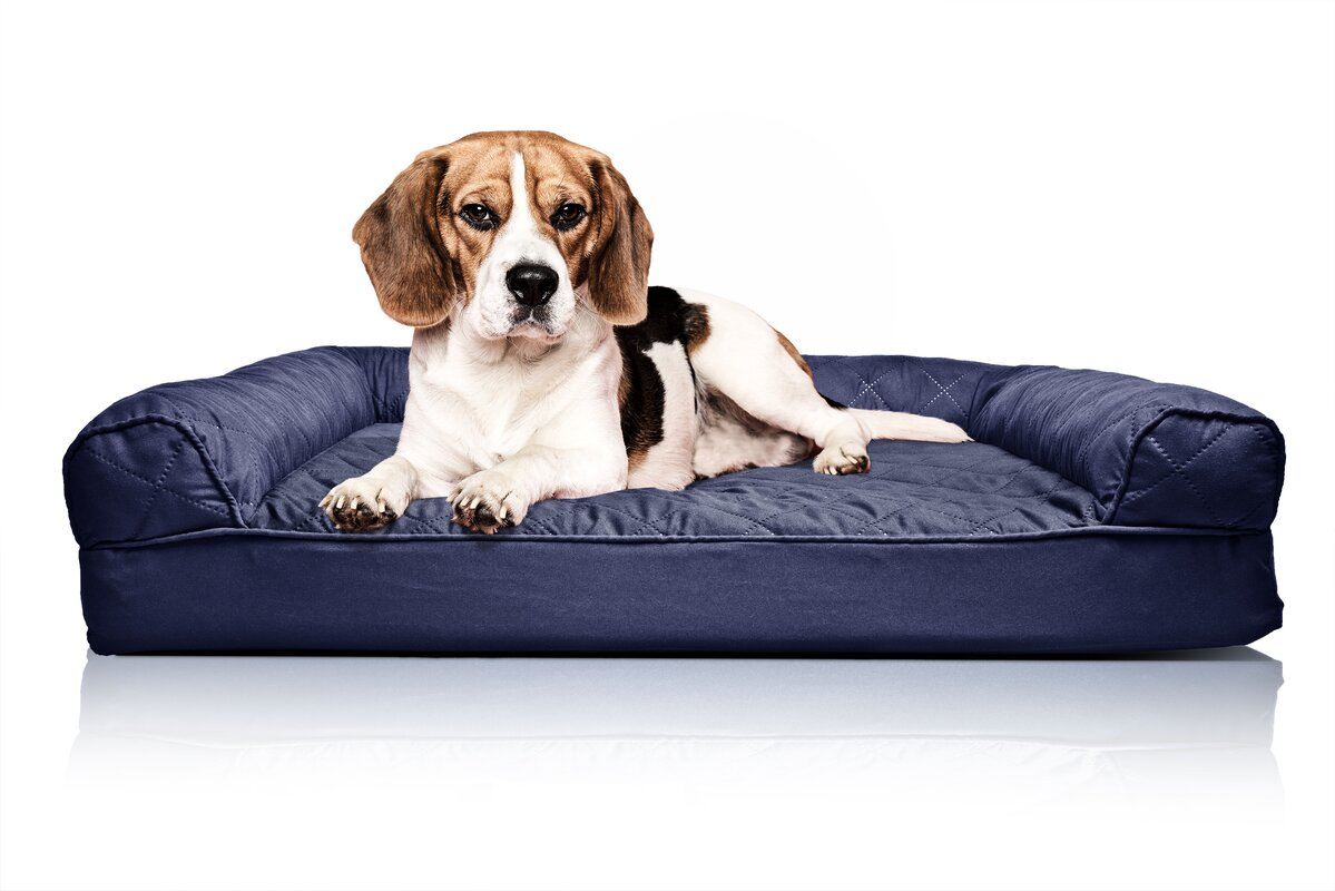 quilted orthopedic sofastyle dog bed