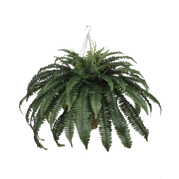 house of silk flowers artificial fern hanging plant in square basket