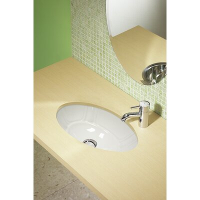 Undermount Bathroom Sink Oval decolav classically redefined oval undermount bathroom sink