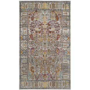 Bernardyn Gray Multi Area Rug