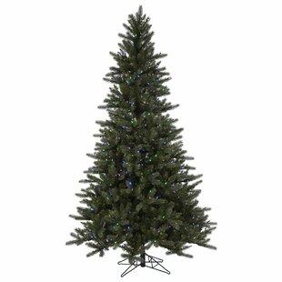 Christmas Tree Stand Ez Rotating   Wayfair