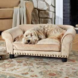 Cot Type Dog Beds