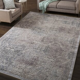 Simms Gray Area Rug