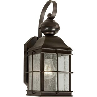 Motion sensor outdoor wall lighting youll love wayfair cresskill 1 light outdoor wall lantern audiocablefo light catalogue
