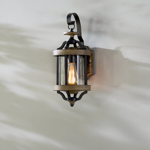 Laurel Foundry Modern Farmhouse Elisabetta 1 Light Outdoor