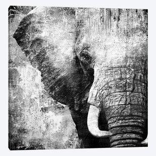 African Animals Wall Art Wayfair