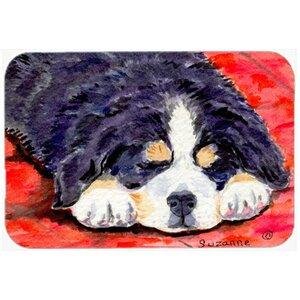 Buy Bernese Mountain Dog Kitchen/Bath Mat!