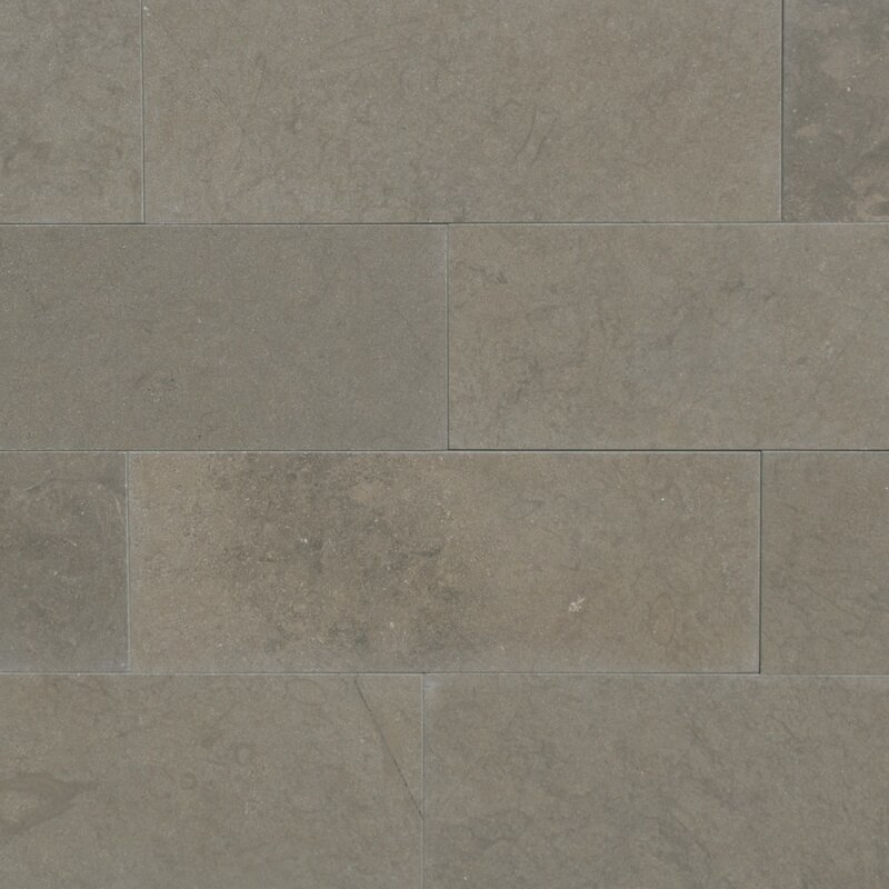 Maes 3 X 8 Limestone Subway Tile