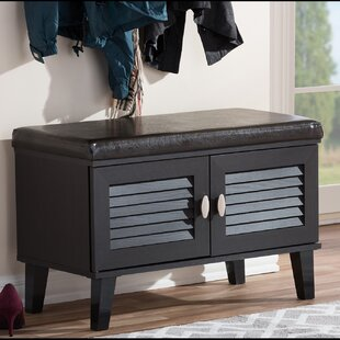 Modest Entryway Cabinet With Doors Gallery