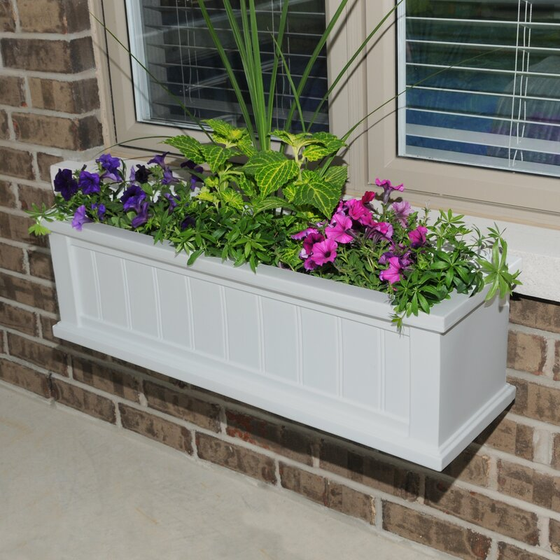Mayne Inc Cape Cod Self Watering Plastic Window Box Planter Wayfair