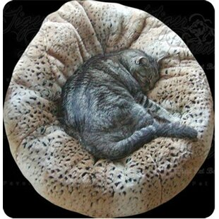 Beddy Ball Pet Bed By Tiger Dreamz