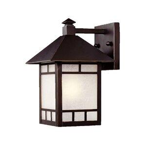 San Pablo 1-Light Outdoor Wall Lantern